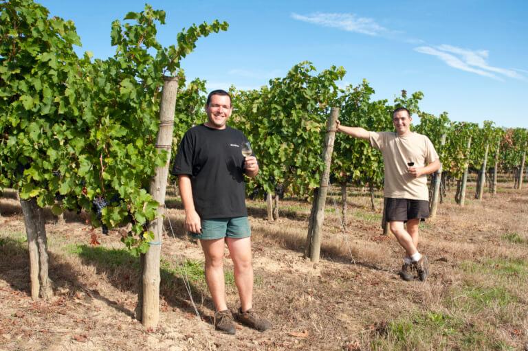 domaine du tastet vins landes 16