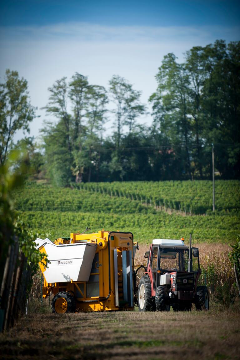 domaine du tastet vins landes 18